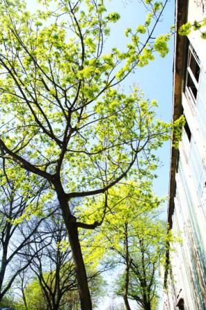 Studieren im Frühling (Foto: Kürschner)