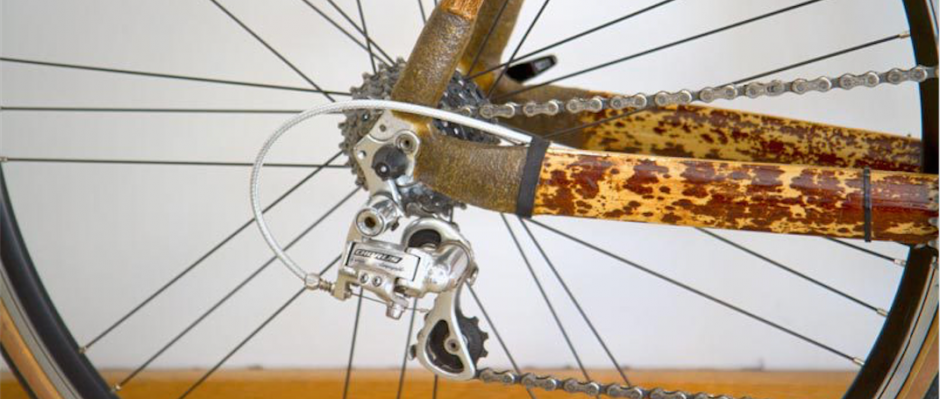 Bis auf Lager, Kette, Zahnräder und Laufräder kann bei einem Fahrrad eigentlich alles aus nachwachsenden Rostoffen gebaut werden. © Christoph Zumbach