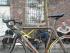 Ein Fahrrad muss nicht unbedingt nur aus Metall bestehen, beweist die Truppe um Triebwerk Grün e.V. © Christoph Zumbach